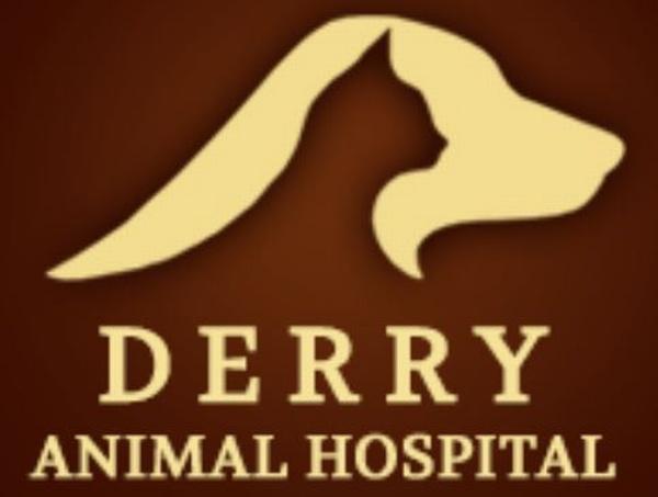 Derry Animal Hospital