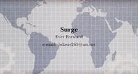 Surge Companies