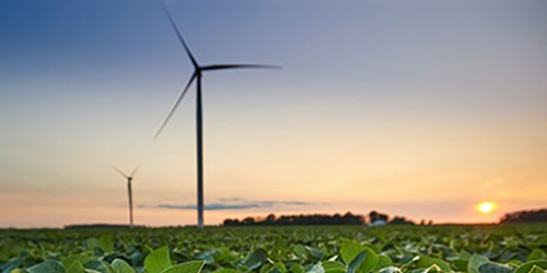 Gallery Image renewable-energy-for-michigan.jpg