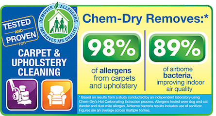 Gallery Image Chem-Dry%201.png