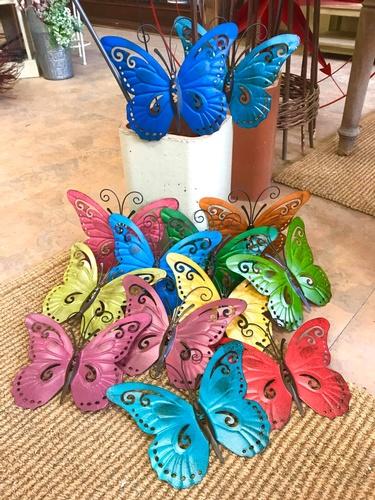 Gallery Image butterflies.jpg