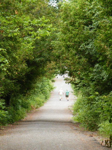 BEL Rotary Bridgenorth Trail