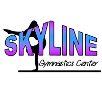 Skyline Gymnastics Center, Ltd.