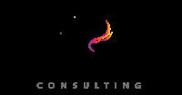 Dark Horse Consulting LLC