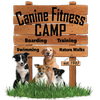 Canine Fitness Camp