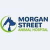 Morgan Street Animal Hospital