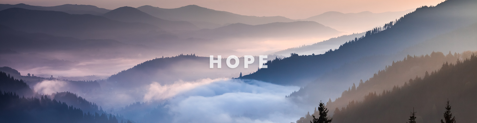Gallery Image hope.jpg