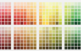 Gallery Image color%20chart.jpg