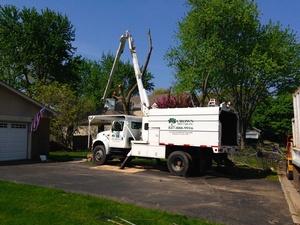 Crown Tree Care, Inc.
