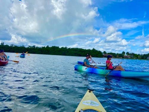 Gallery Image KayakingSRQ05.jpg