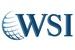 WSI eStrategies