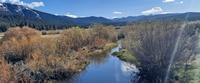 Martis Creek Wildlife Area Trail