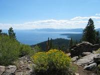 Tahoe Rim Trail