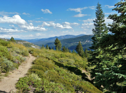 Gallery Image donner%20lake%20rim%20trail-1.png
