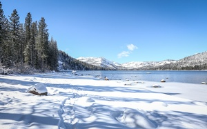 Donner Memorial State Park - Nordic Ski Trails