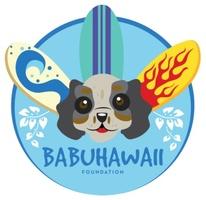BabuHawaii Foundation