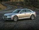 Audi Lakeland