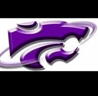Wildcat Lawn Care and More