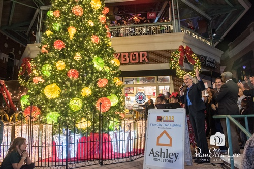Gallery Image ybor_cc_tree_light2019-3997.jpg