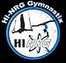 Hi NRG Gymnastix