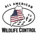 All American Wildlife Control