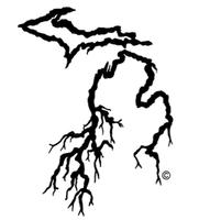 My Michigan Roots