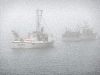 Chatham Fog by Heather MacKenzie