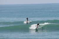 Paddleboard surfing is easy to learn and fun!