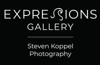 Expressions Gallery