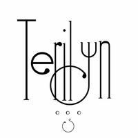 Terilyn Steverson Photography