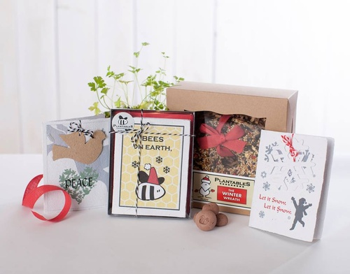 Seed paper cards for all occasions and bird seed wreaths
