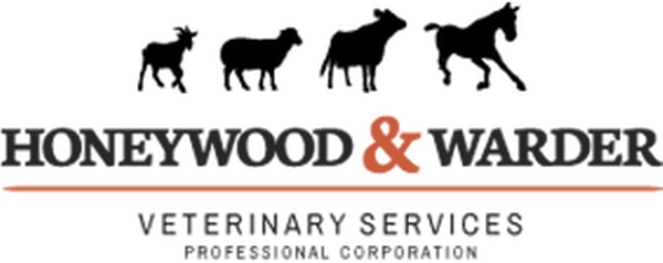 Honeywood & Warder Veterinary P.C.