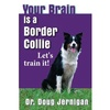 Your Brain is a Border Collie!