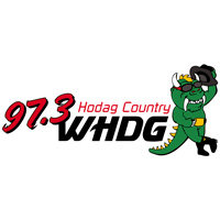 WHDG 97.3 FM Hodag Country