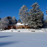Gallery Image Let-it-Snow..jpg