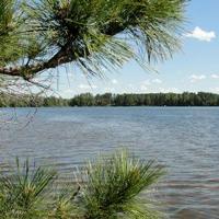 Gallery Image Pickerel-Lake.jpg