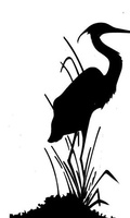 Black Heron Spirits