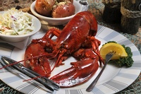 Gallery Image Lobster-07.jpg