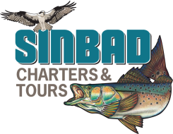Sinbad Charters & Tours