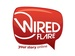 Wired Flare Inc.