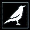Raven Studio Inc.