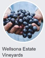 Wellsona Estate Vineyard