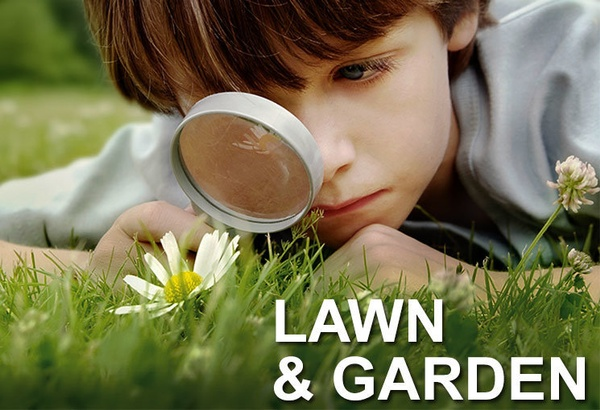 Gallery Image lawn_garden_homepage.jpg