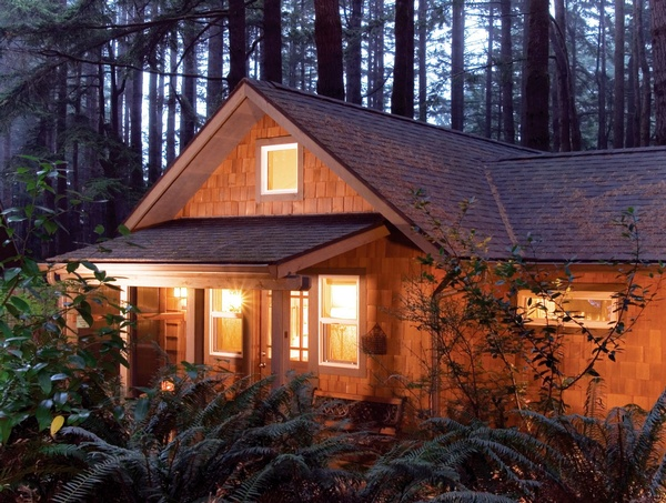 Cabin suites in the woods