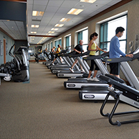 Flex Fitness Studio