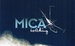 Mica Heli Guides &  Lodge
