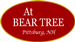 At Bear Tree