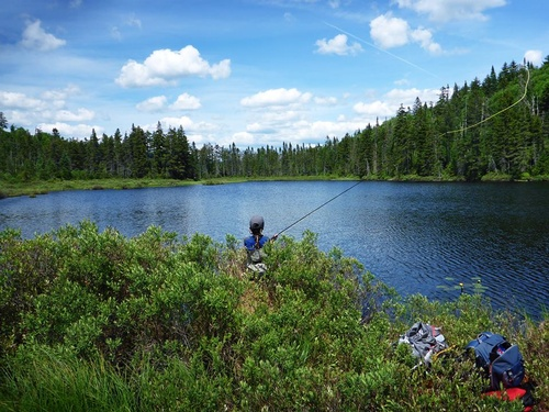 Fly Fishing Ponds