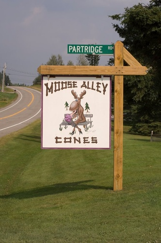 Gallery Image moose%20alley%20cones1.jpg