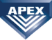 APEX INVESTIGATION & SECURITY INC